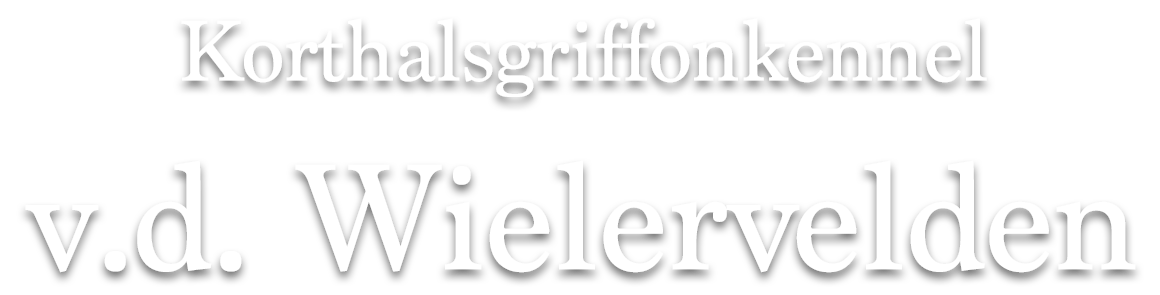 v.d. Wielervelden